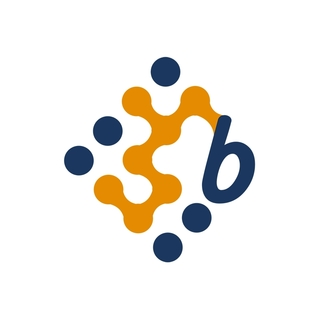 BenErg Software Solutions